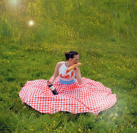 picknickdress.jpg